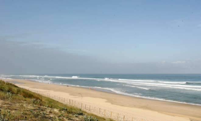 Landes: when the ocean meets the forest…